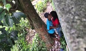 Casal Transa Na Matinha Depois De Se Conhecerem No Bloco De Carnaval De Rua