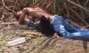 Flagras de sexo no mato – Casal transando no canavial da fazenda