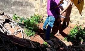 Negra amadora pagando boquete no beco da favela